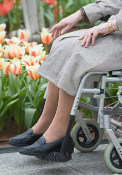 image of a lady in a wheelchair