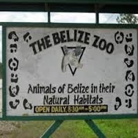 Belize Zoo Walkways for Handicaps
