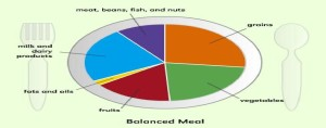 Balanced meal- food group plate- healthy nutrition meal planner plate.